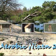 Aerobic Nixen 2